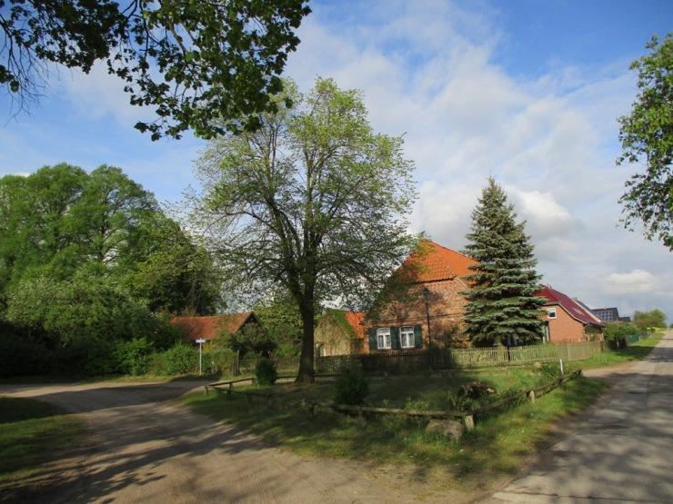 rondell-friedhofsweg.jpg